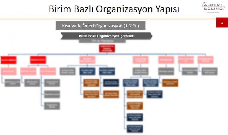 organizasyon-semasi