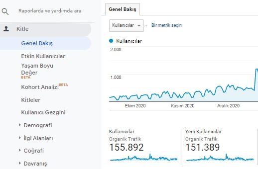Organik Trafik Google Analytics